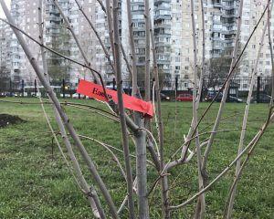 В парке 850-летия Москвы завершается благоустройство территории