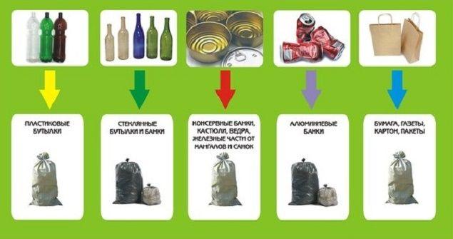 Поводок, пакет, совок: депутаты научат убирать за питомцами и сортировать мусор