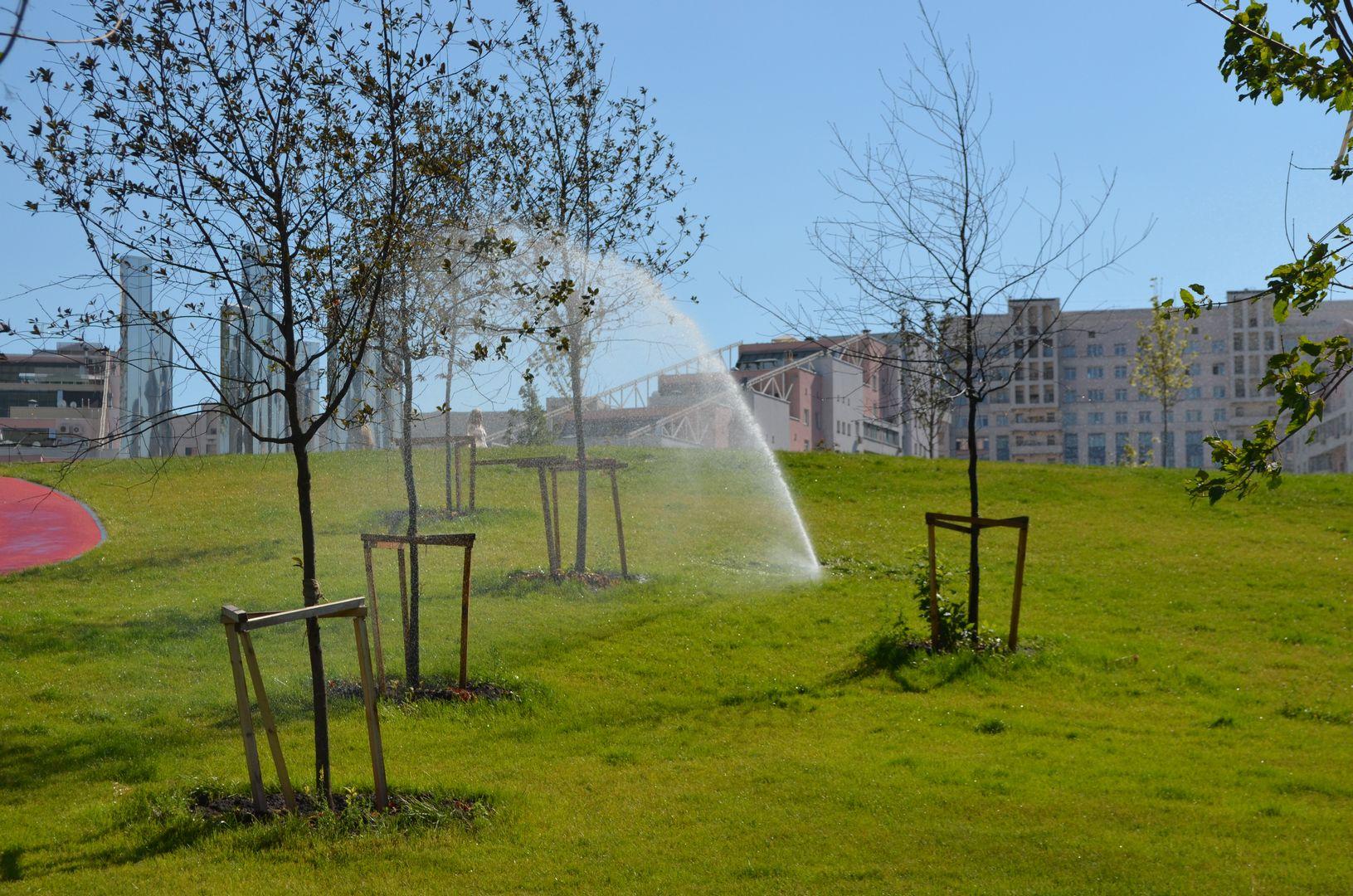 парк на Ходынском поле