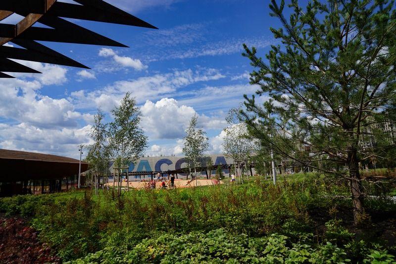 Фото из парка «Тюфелева роща»