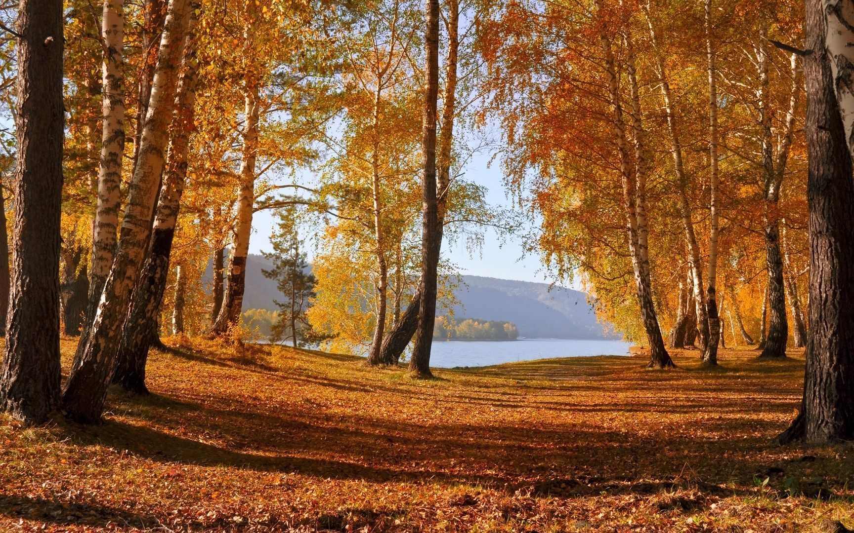 уборка листвы
