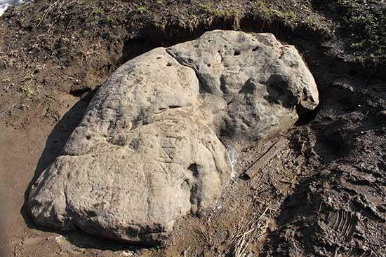 Гусь-камень