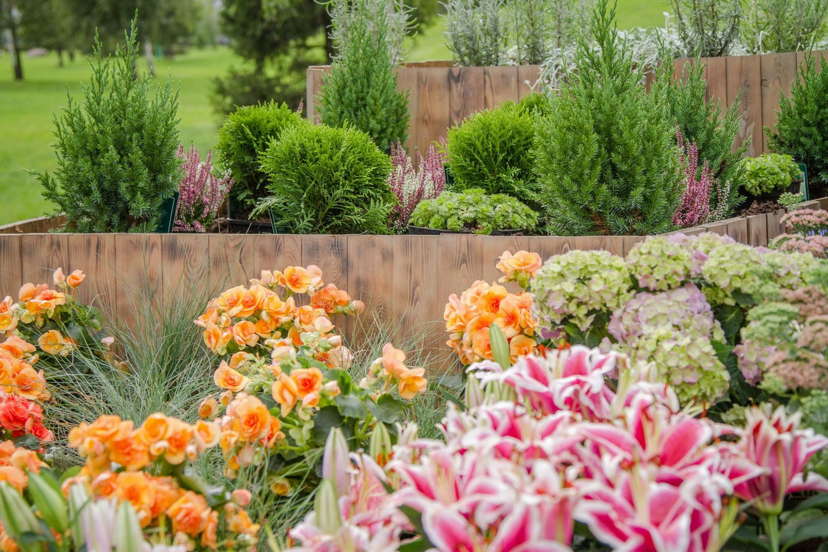 Тактильный сад
