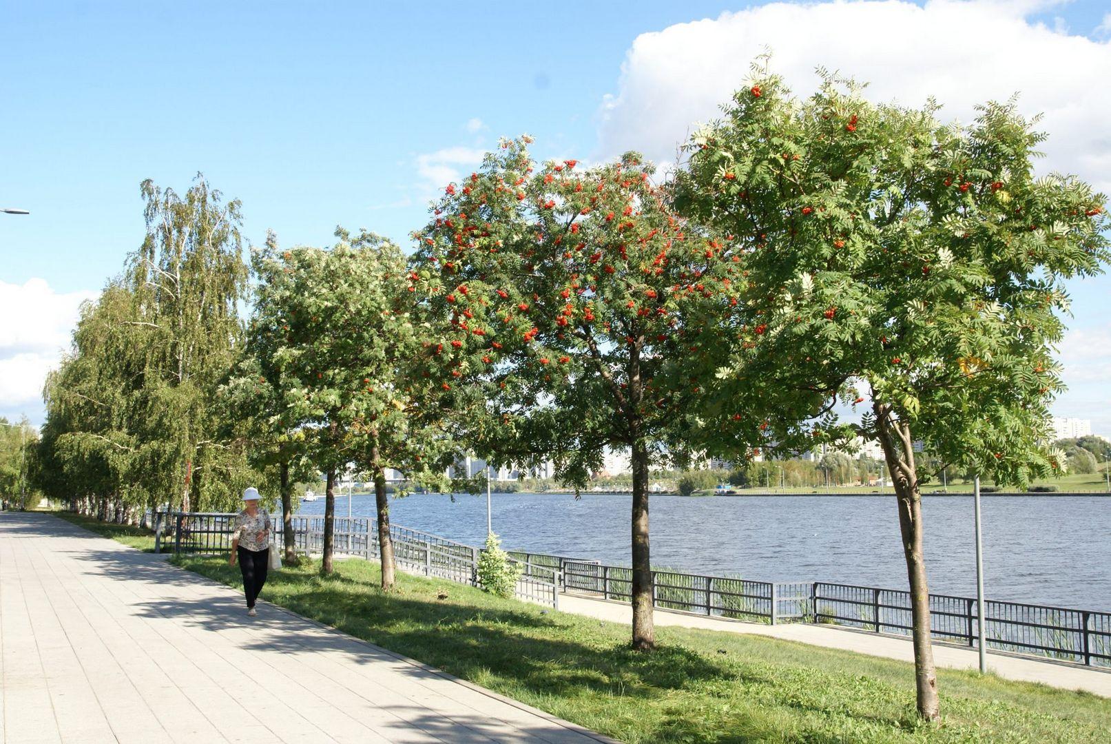 парке 850-летия Москвы