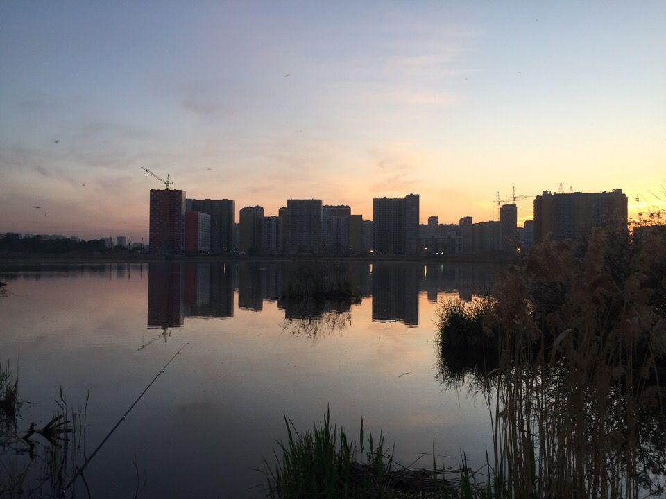 Парк у Некрасовки