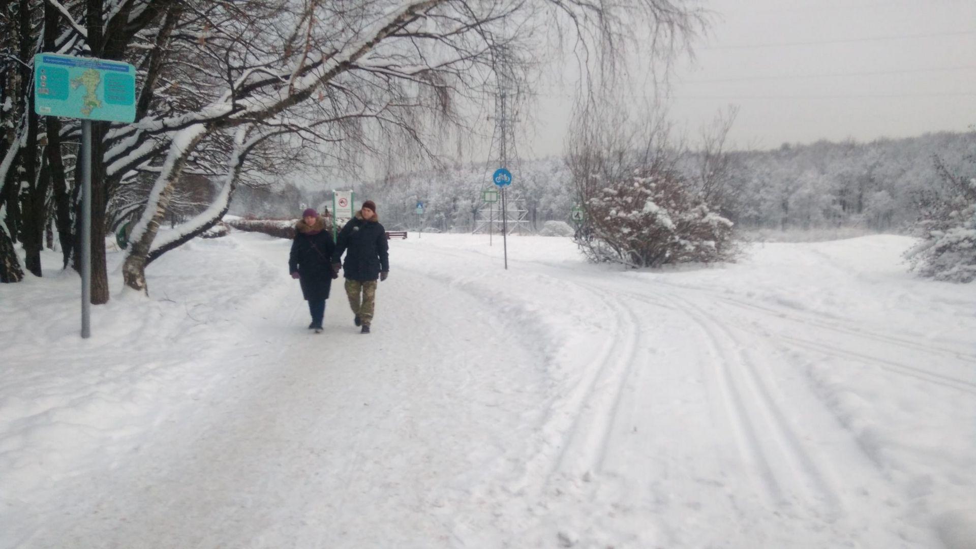 гуляют в парке зимой