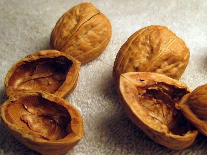 энергия из скорлупы грецких орехов