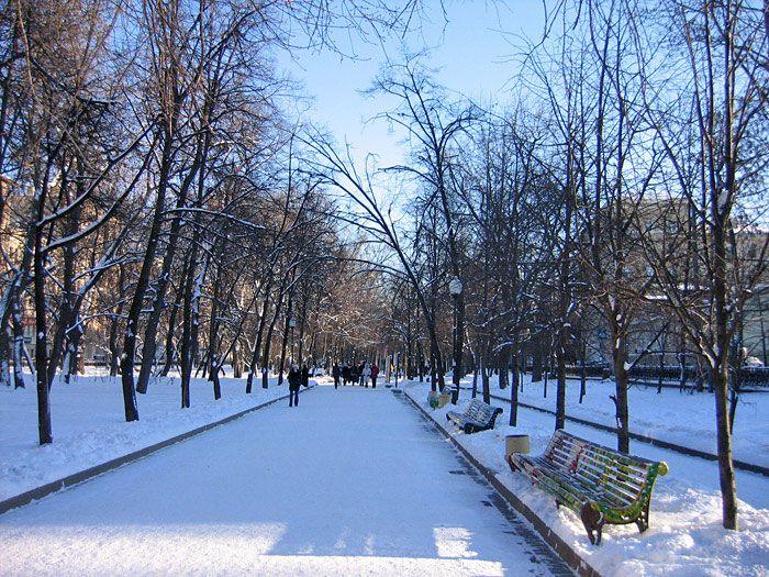 Сквер в Москве