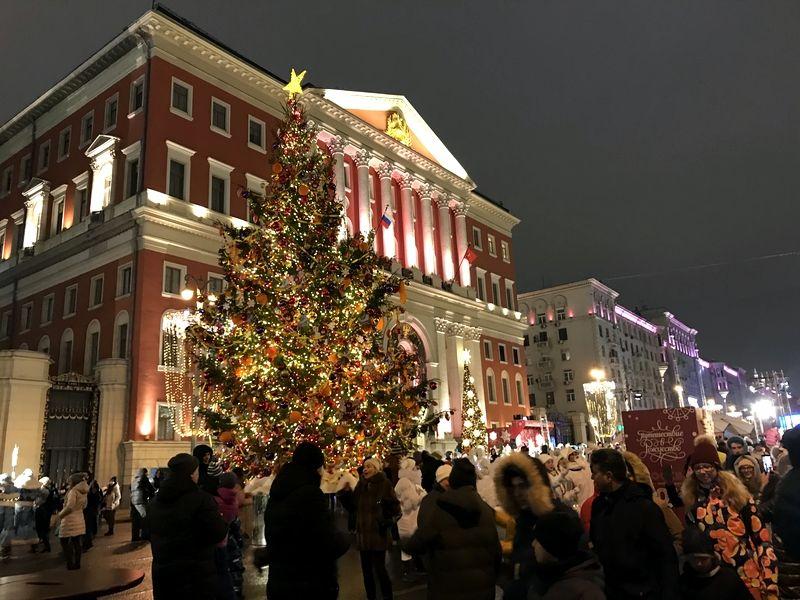 новый год мэрия елка