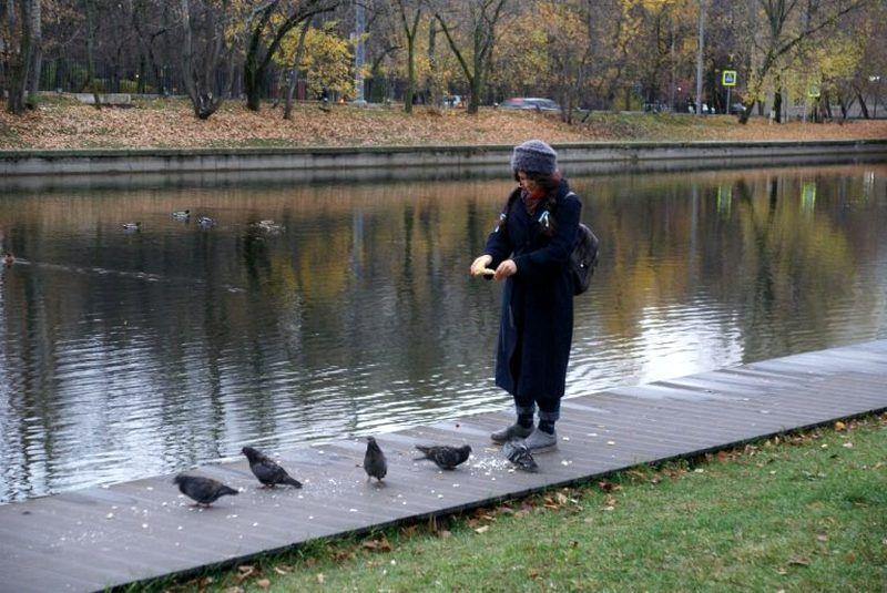 девушка кормит голубей парк