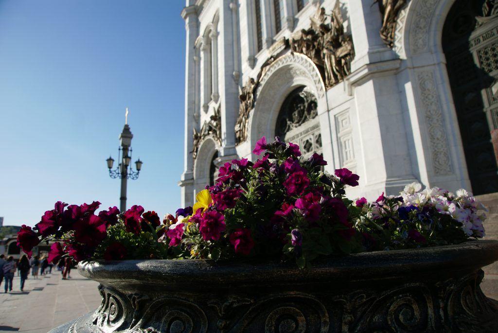 цветы весна в Москве украшение Москвы храм