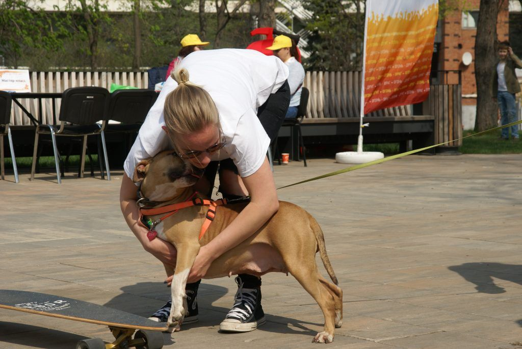 волонтеры с собакой