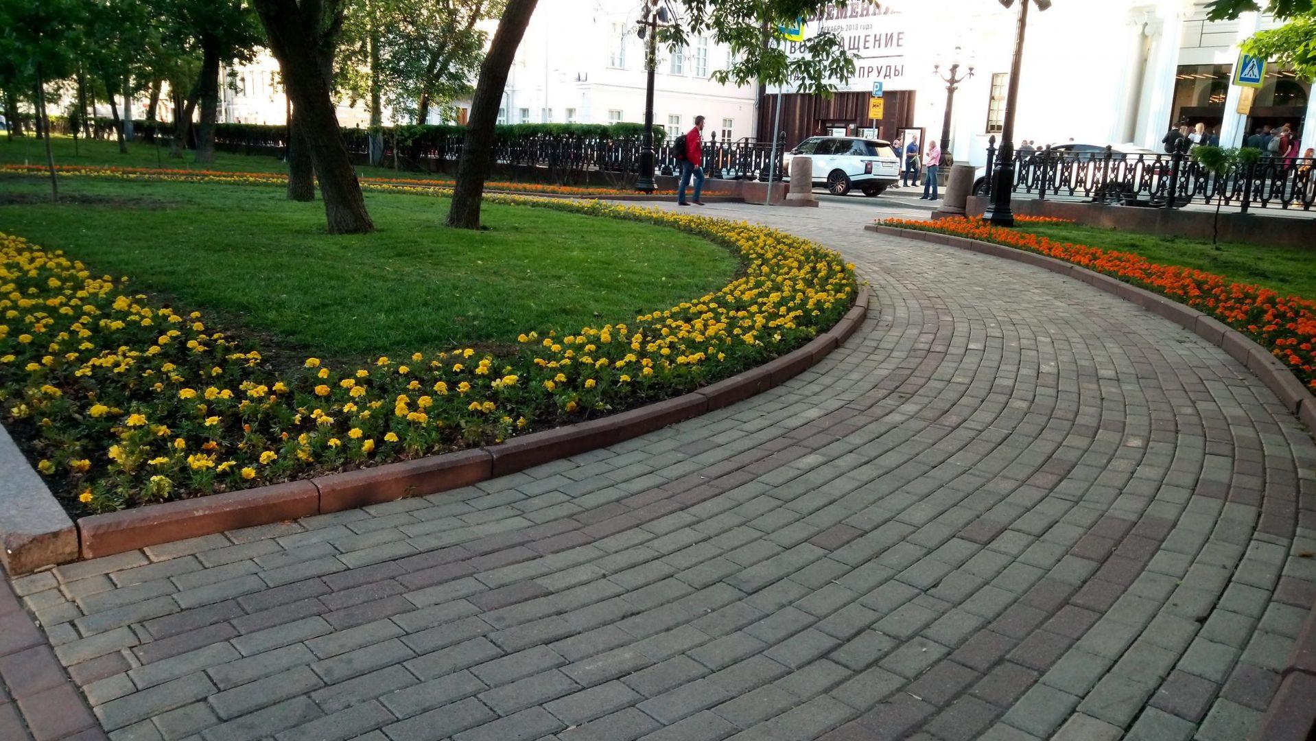 клумбы цветы озеленение благоустройство украшение Москвы