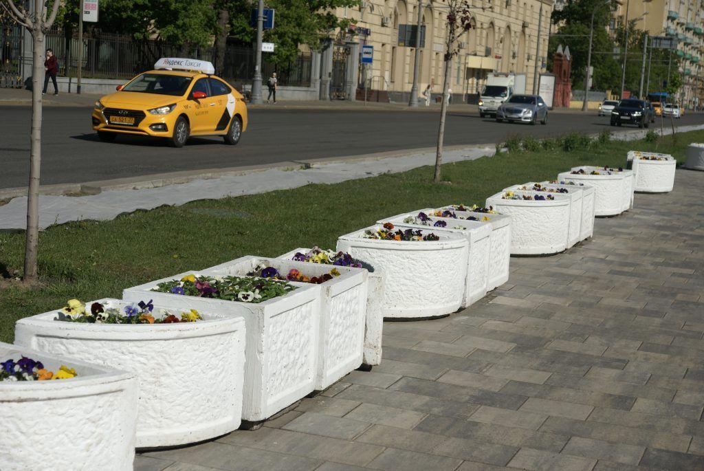 цветы весна в Москве украшение Москвы машина