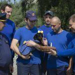 Московские спасатели: — Безопасность – превыше всего