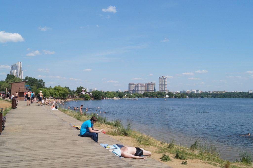 зона отдыха Строгинская пойма пляж загорают