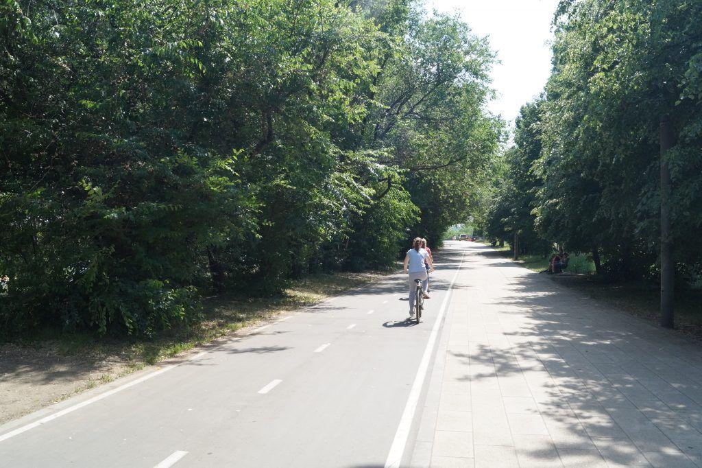 зона отдыха Строгинская пойма велопрогулки