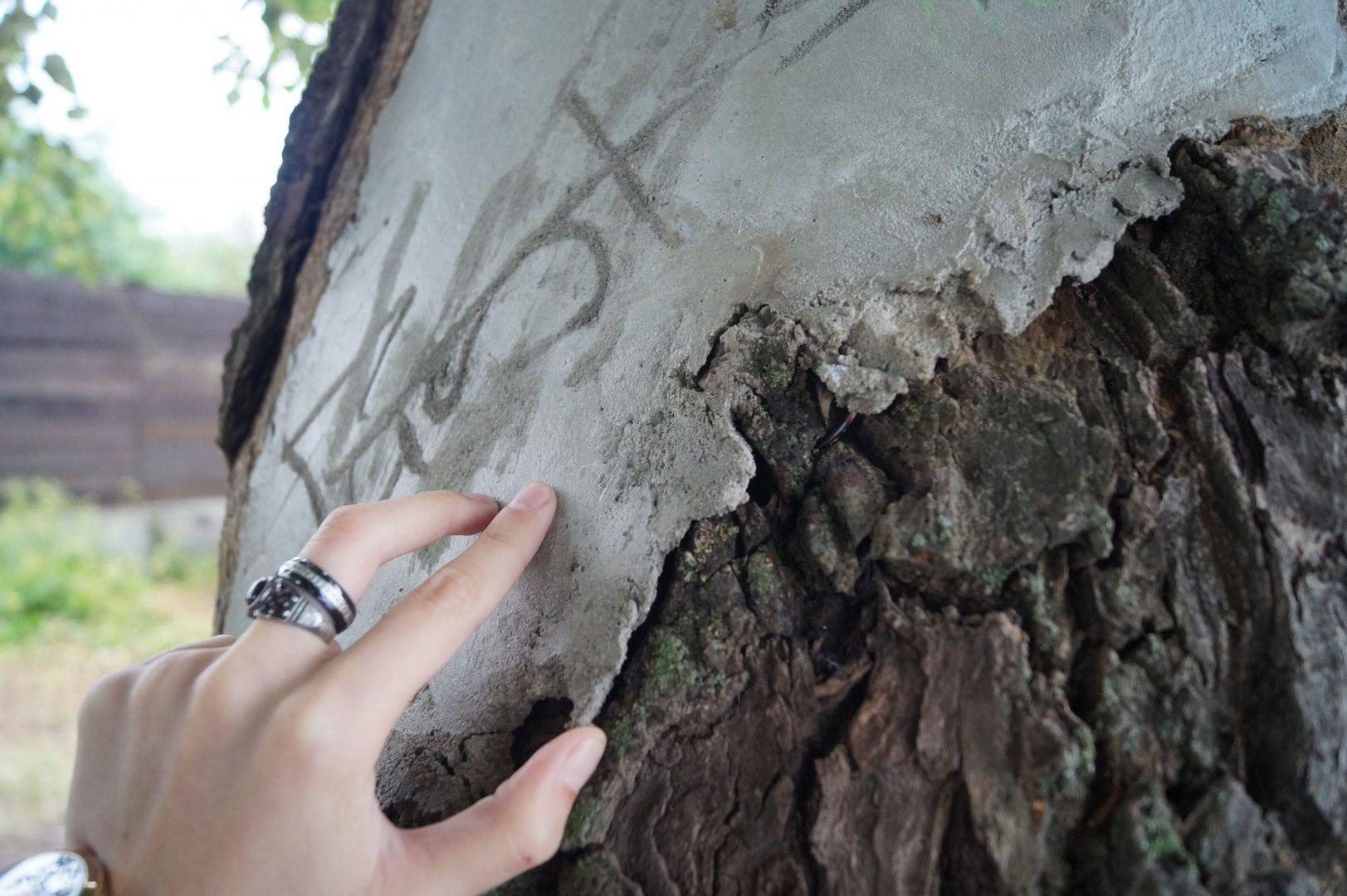 Цементное покрытие, морозобоина