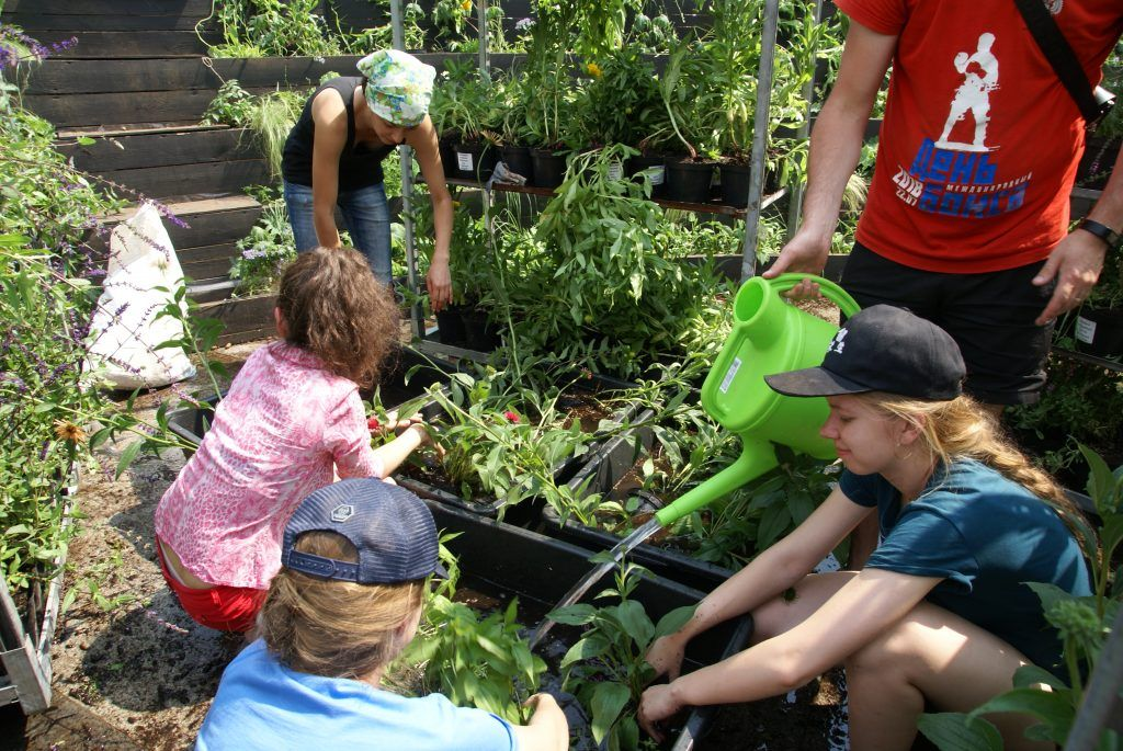 фестиваль Цветочный джем Москва-сити дети высадка растений