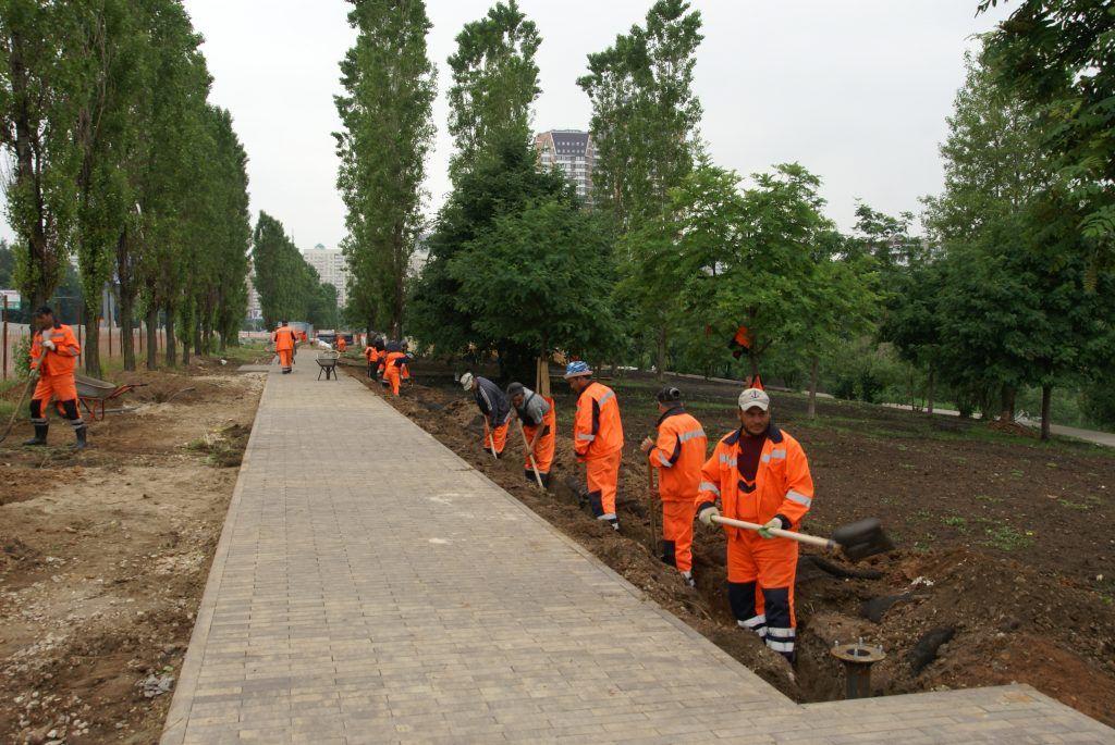 Большой Очаковский пруд благоустройство озеленение рабочие