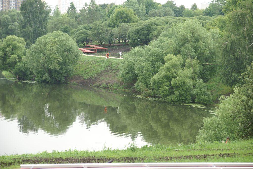 Большой Очаковский пруд благоустройство озеленение