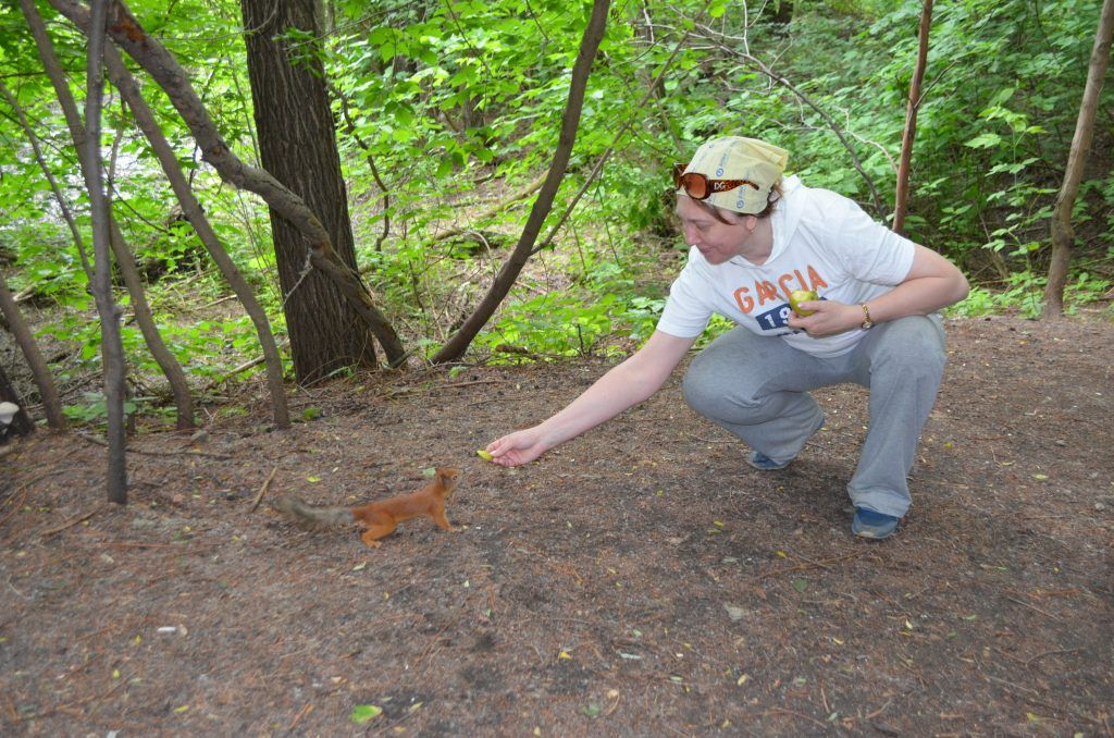зона отдыха Строгинская пойма лето в Москве белка кормят белку