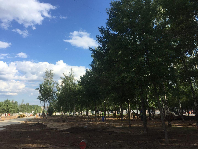 парк Света благоустройство