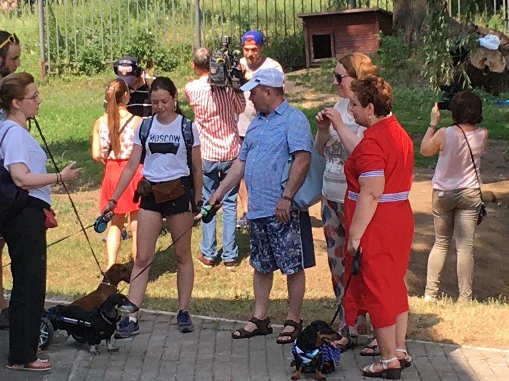 Строгино спасатели собаки отдыхающие