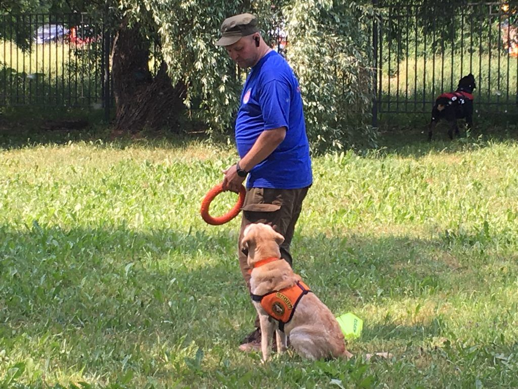 Строгино спасатели собаки
