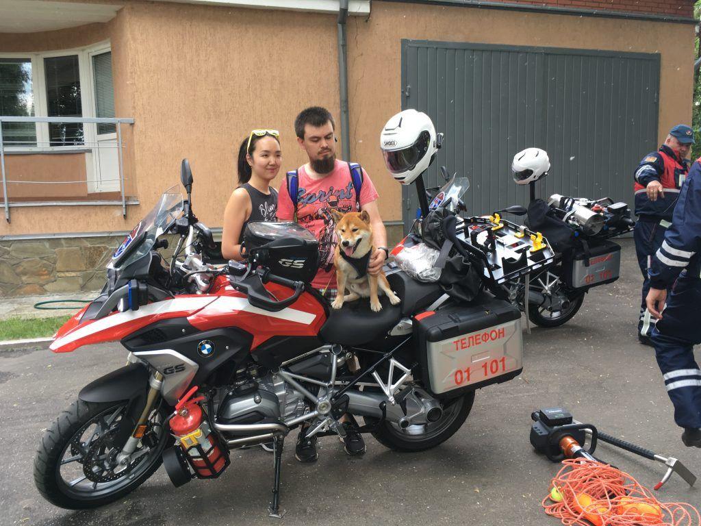 Строгино собаки спасатель мотоцикл