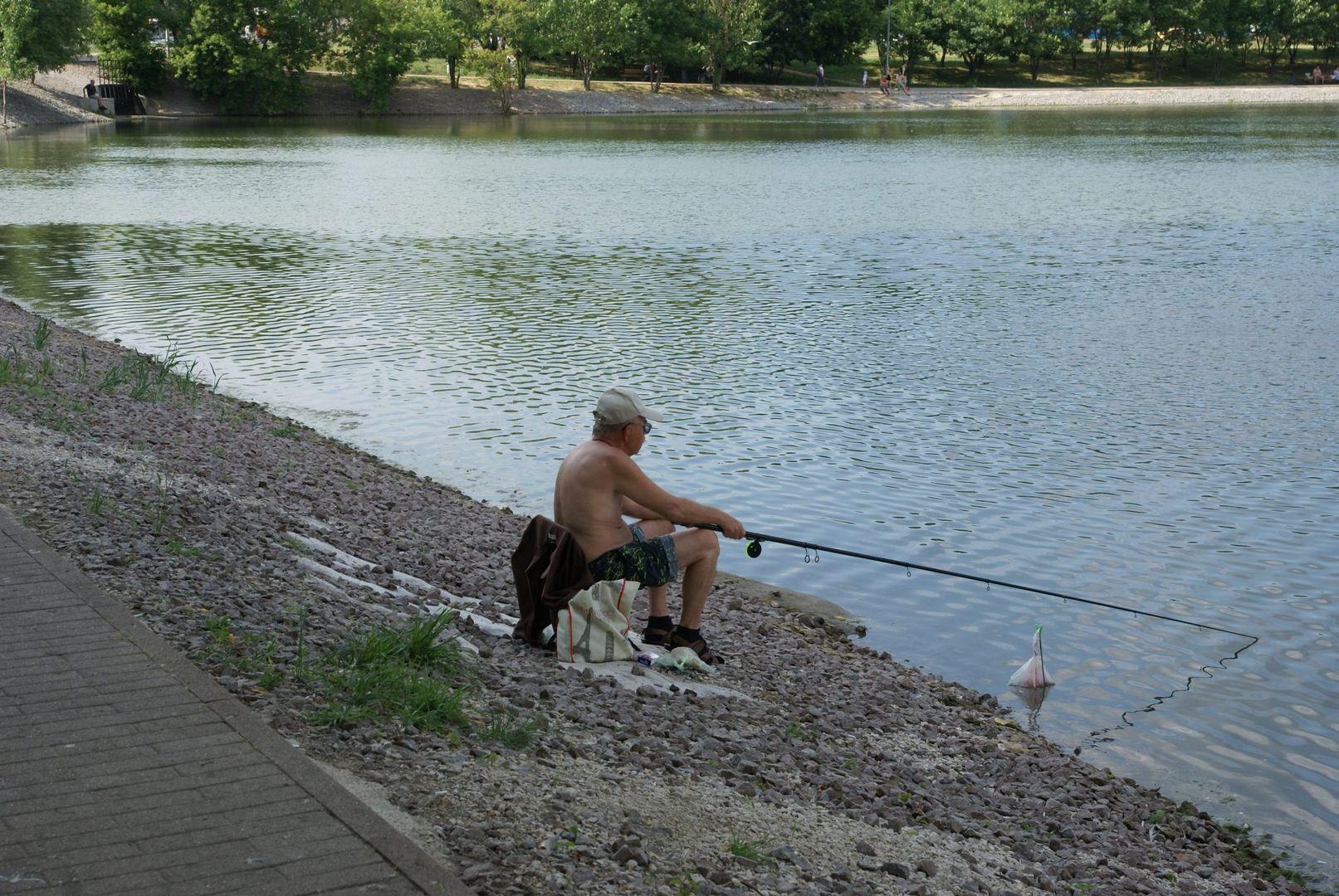 Солнцево Большой Солнцевский пруд благоустройство Центральный парк рыба