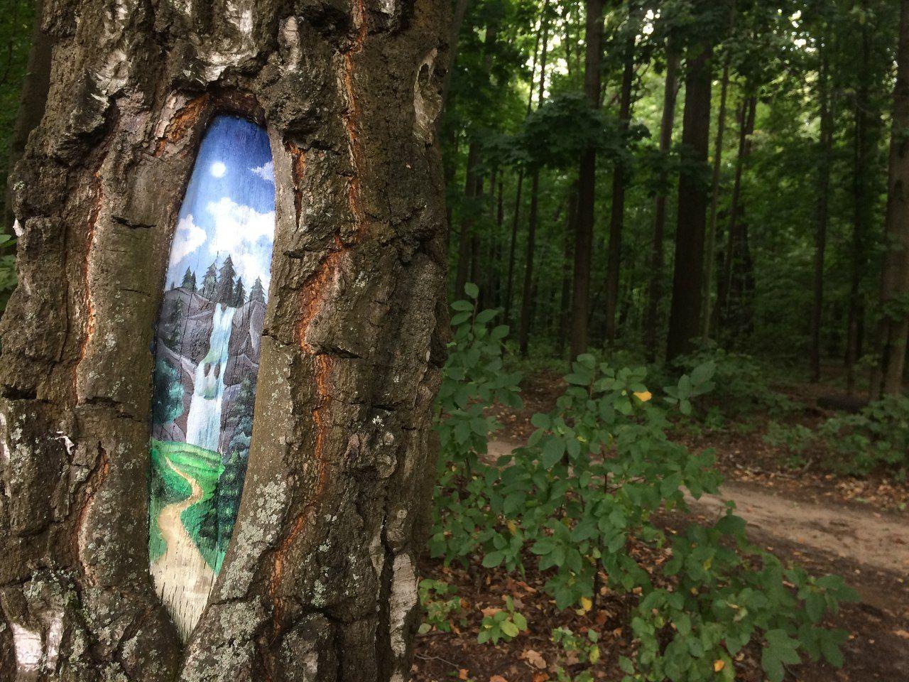 водопад, рисунки на деревьях