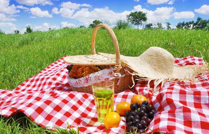 Пикник лето в Москве продукты
