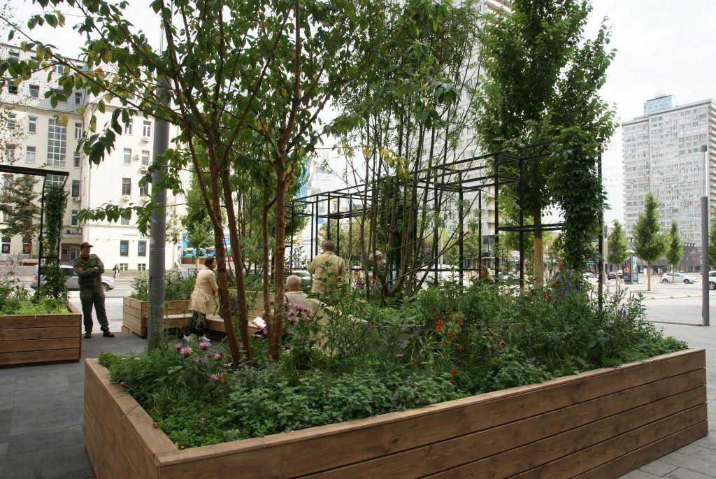 сад «Городская пастораль» фестиваль Цветочный джем
