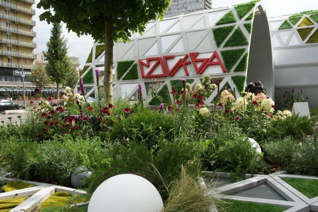 фестиваль Цветочный Джем Сад «Страница 19»
