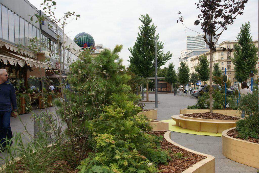 Сад «Жизнь» фестиваль Цветочный джем
