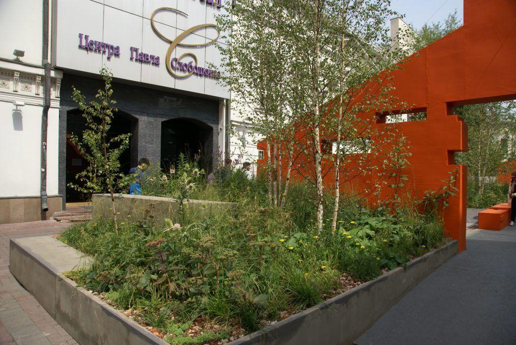сад Выше крыши фестиваль Цветочный джем