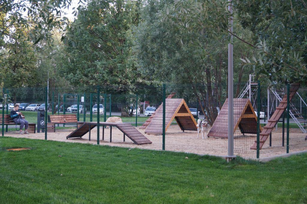 благоустройство, тимирязевский район, площадка для выгула собак