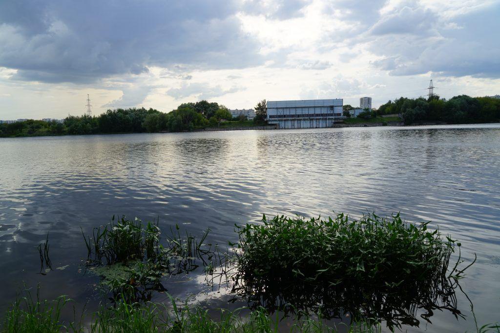Капотня, благоустройство, мой район, озеленение, пруд