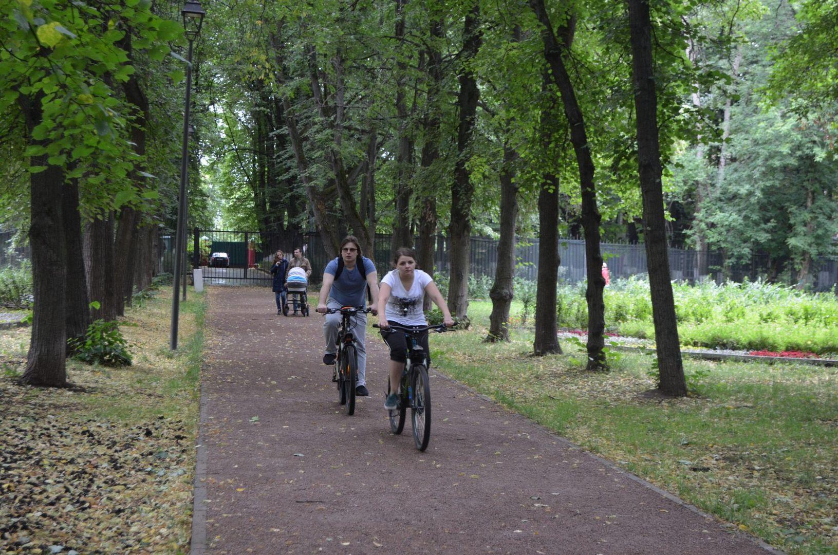 велосипед, аллея