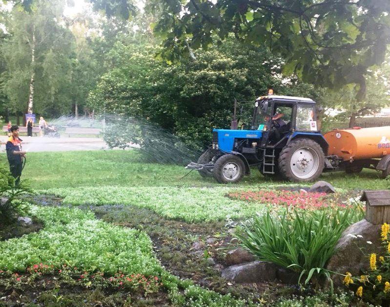 трактор, газоны, парк