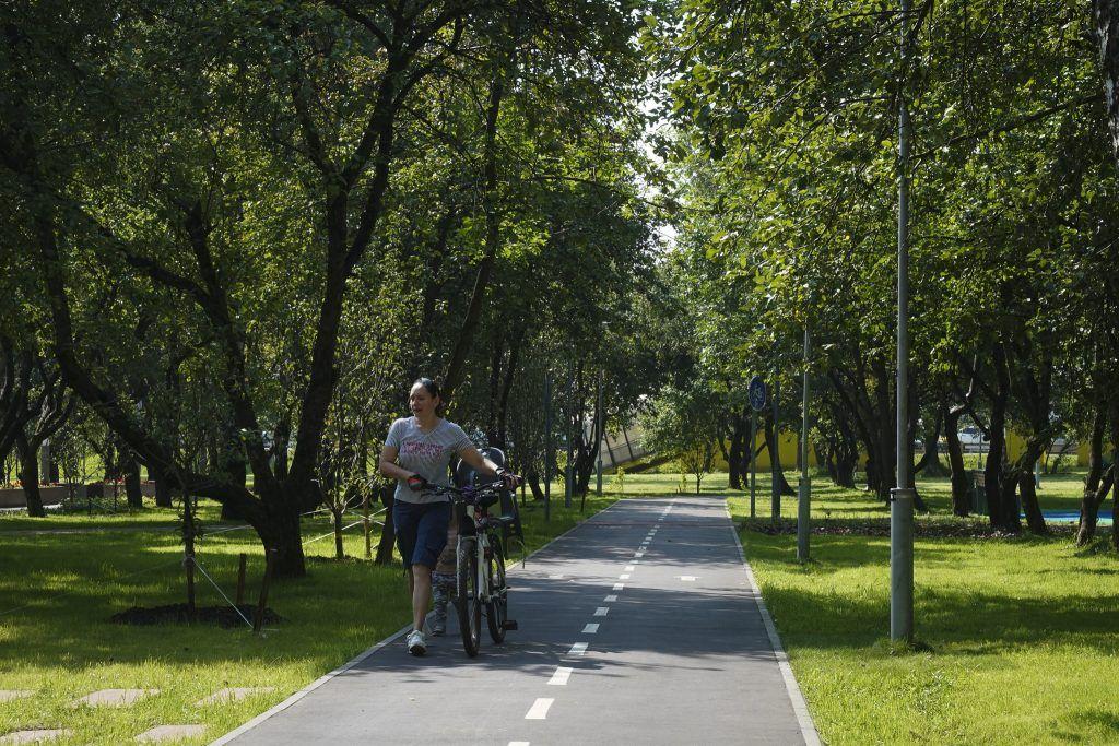 благоустройство, яблоневый сад, велодорожки