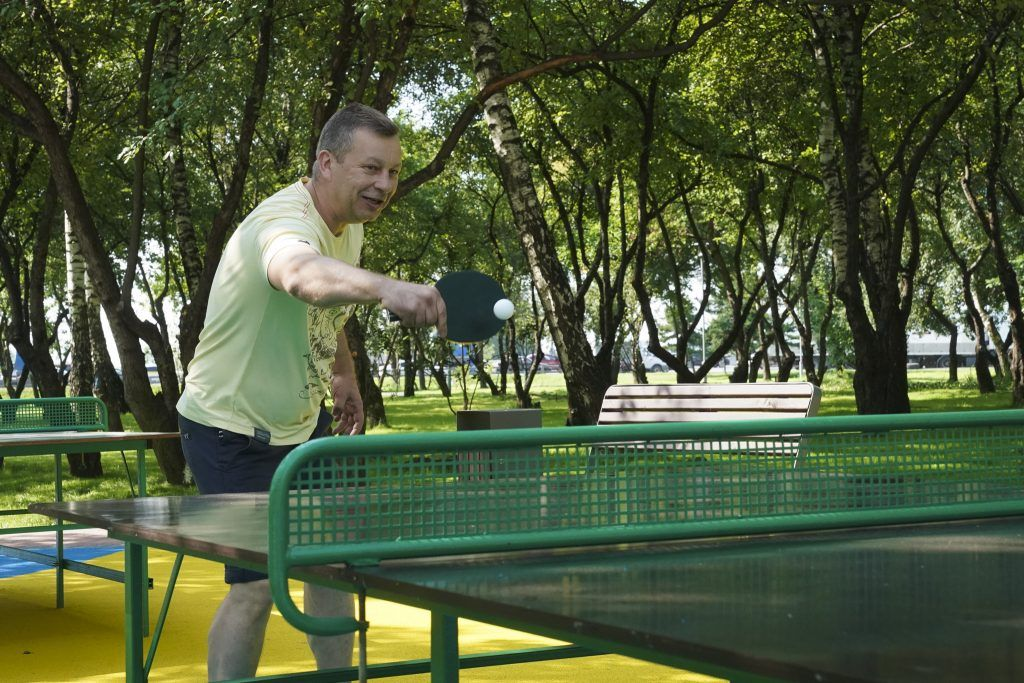 благоустройство, яблоневый сад, спортивная площадка