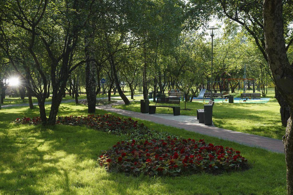 благоустройство, яблоневый сад, мой район, клумбы
