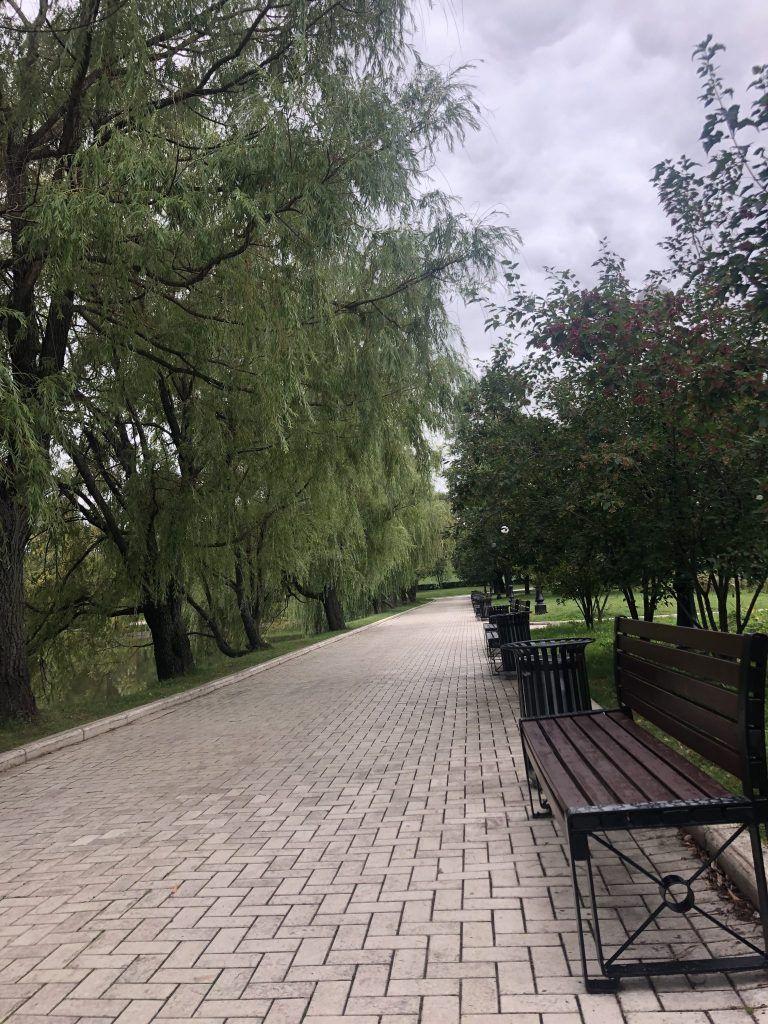 Новодевичьи пруды, аллея, парки Москвы