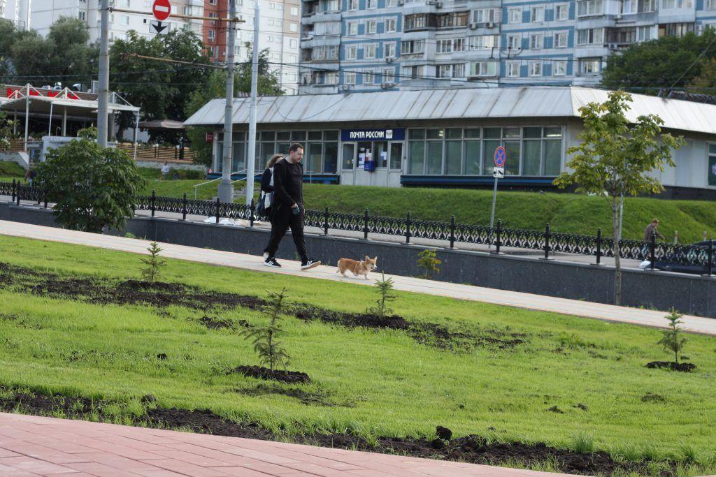 Крылатское, Осенний бульвар, благоустройство, озеленение