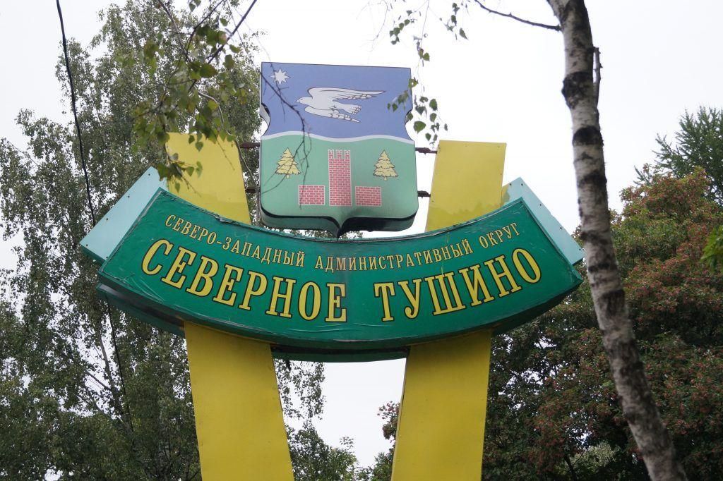 парк Северное Тушино, парки Москвы