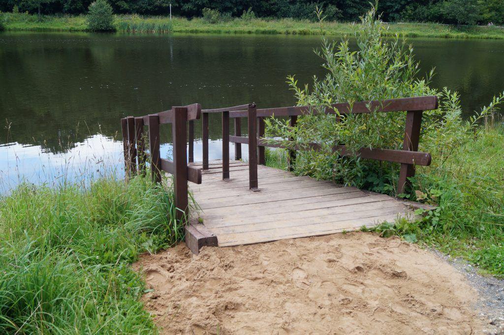 Терлецкий лесопарк, пруд, спуск с берега
