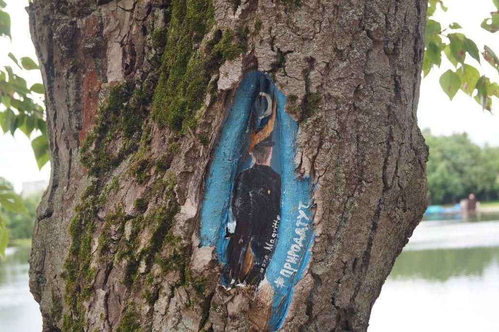 Терлецкий лесопарк, рисунки на деревьях