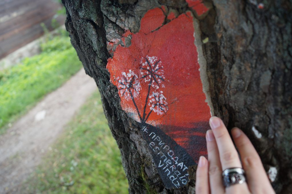 Рисунки на деревьях, парк Косино, деревья